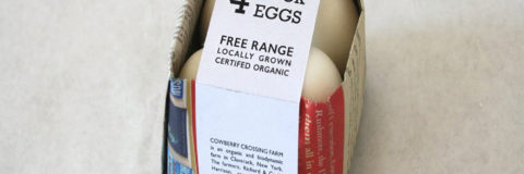 How To Attract Eco-Friendly Consumers By Promoting Easy-To-Read Product Labels